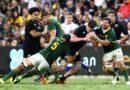 Gutsy Boks edged by All Blacks in epic 100th clash